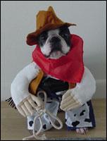 pirates of boston harbor - Halloween Costumes In Boston